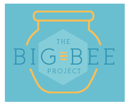 The Big Bee Project